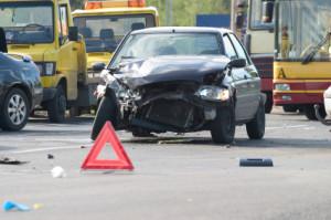 Auch bei einem Wildunfall kann eine Fahrerflucht Folgen haben.
